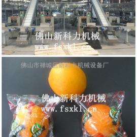 连接分级机用的全自动脐橙包装机