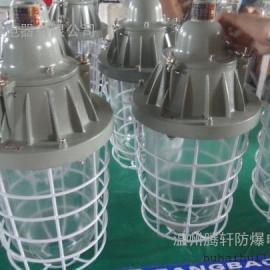 DCG52-B200隔爆型防爆灯