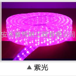 LED彩色灯带、LED霓虹灯、LED节日亮化灯带产品