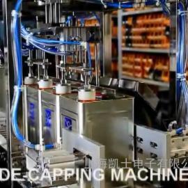 四工位20L自动对口称重灌装机客户案例(码垛、缠绕)