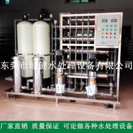 1T/H二级反渗透水处理系统