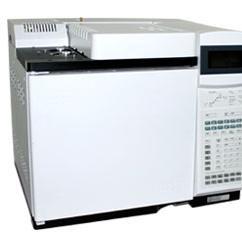 GC6891N气相色谱仪