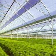 TWS-WS 日光温室大棚环境自动测试系统 厂家直销