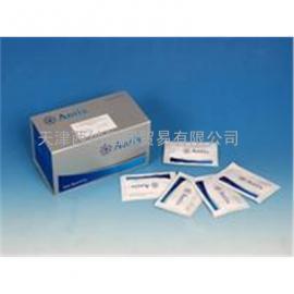 原装美国DSL试剂盒