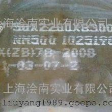 NM500/WNM500