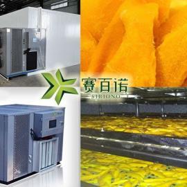 中小型节能省电的芒果干烘干机