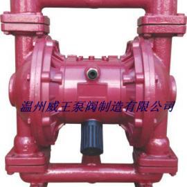 QBY泥浆隔膜泵,铸铁丁晴气动隔膜泵,微型气动隔膜泵