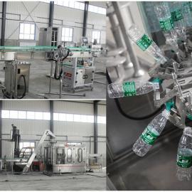 广东小瓶纯净水生产线设备