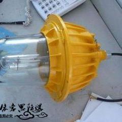 内场防爆灯(立杆弯杆式)BFC8130-N250W