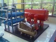 D5/10-6消防气体顶压设备厂家