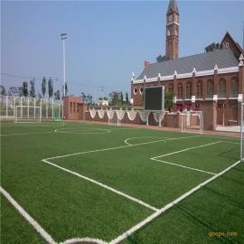 厂家直销时宽人造草 足球场专用PE材质人工草皮 运动仿真草皮塑料