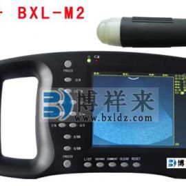 黑白B超价格,便携式兽用B超测孕仪多少钱一台