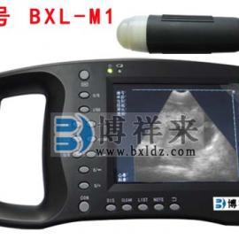 �iB超/�i用B超/母�i用B超�y孕�x