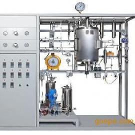 北洋励兴高压流化床反应器装置厂家直销