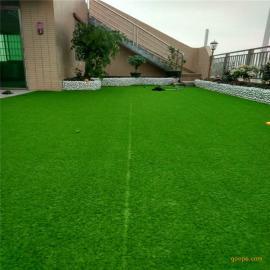 厂家直销休闲装饰人造草坪,庭院仿真人工草皮,幼儿园PE草坪