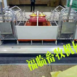 山东福临猪哈哈厂家供应双体母猪产床规格 按参数规格报价
