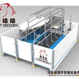 供应多功能养猪设备厂家浙江母猪产床厂家