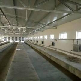 种植加温设备(种植加温锅炉)温室大棚专用
