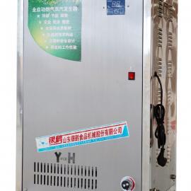 银鹤YH-50型蒸汽发生器操作简便