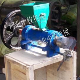 河北中牧制造DGP40-II家用型多功能休闲食品膨化机