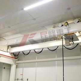 电子洁净室起重机,电子洁净室起重机供应商