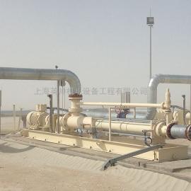 耐驰螺杆泵-耐驰油田地面输送泵NM125SY06S36V