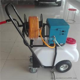 电动打药车 推车式蓄电池喷药车 充电推车消毒喷雾器50L