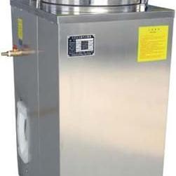 YXQ-LS-50G立式压力蒸汽灭菌器
