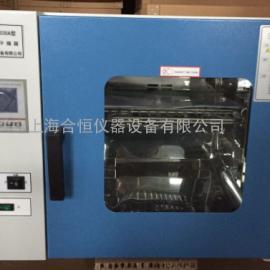 电热恒温干燥箱 高温干燥箱 鼓风干燥箱 DHG-9035