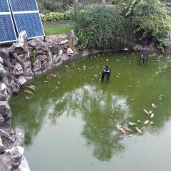 无动力生活污水处理设备