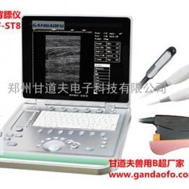 笔记本式小动物多普勒彩超GDF-ST8价格多少钱