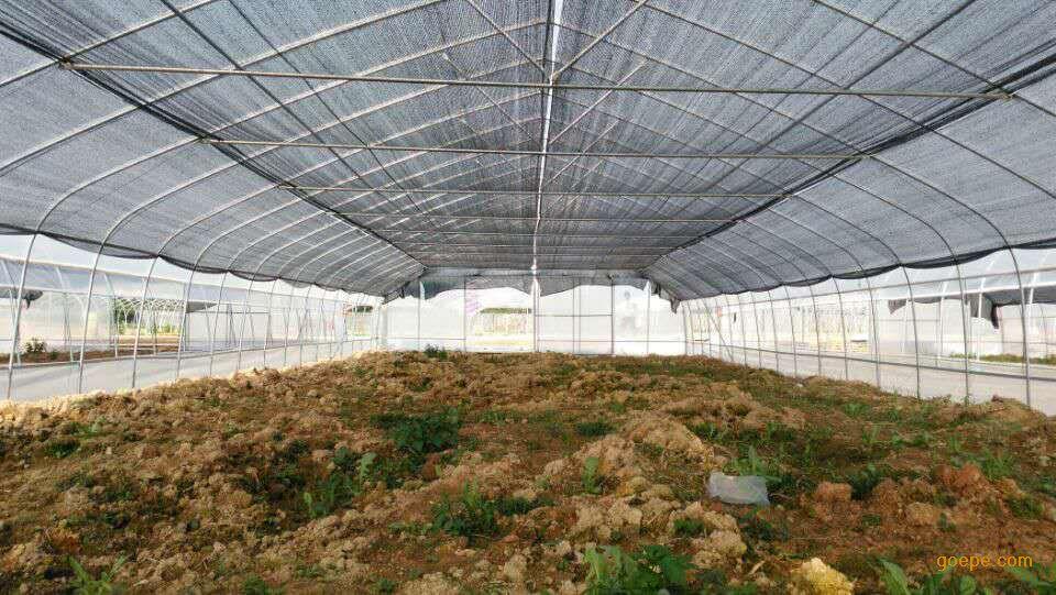 智能型花卉温室,农用大棚,生态温室,日光大棚,果树大棚,玻璃温室等