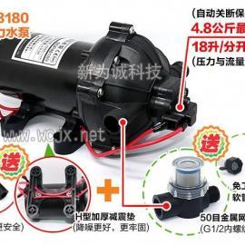 大流量高压微型水泵BSP48180