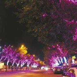 街道两边树木亮化灯具生产厂家