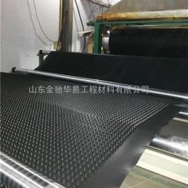 绿化专用排水板_南通市排水板_土工膜(多图)