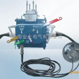 FZW28-12F户外高压分界真空负荷开关
