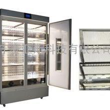 LED顶置智能人工气候箱SYS-450E