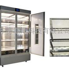 LED顶置智能人工气候箱SYS-280E