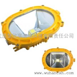PD-GB6601 LED50W防爆泛光灯PD-GB