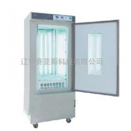 人工气候箱SYS-SPX-300IC