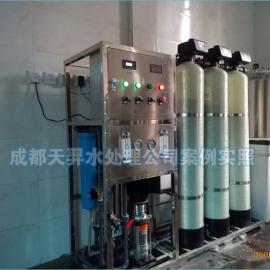 四川纯净水设备天羿0.5吨工业反渗透水处理纯水设备