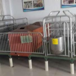 杭州猪哈哈母猪产床欧式产床2.2*3.6热镀锌管精致而成可定做