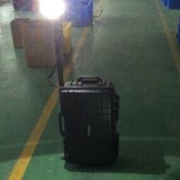 海洋王30W LED FW6106防爆应急照明灯