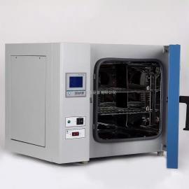 高温鼓风干燥箱 实验室烘干箱 恒温烤箱 DHG-9140A