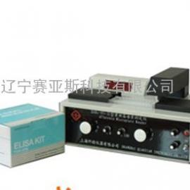 黄曲霉毒素仪SYS-EAB1-95