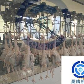 昊腾 家禽屠宰设备流水线 视频介绍