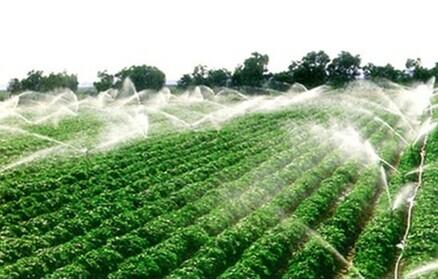 广西果树滴灌厂家-蔬菜滴灌-滴灌系统