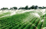 果树喷灌哪家便宜?找君宝农业