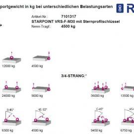 RUD吊环螺栓固定式带止动片VRS-F-M48|德国RUD