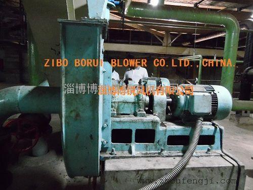FZ-0.8-2000-1轴封风机